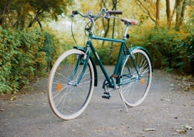 Freds Bicycle 1