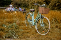 Freds Bicycle 2