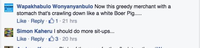 White Boer Pig response
