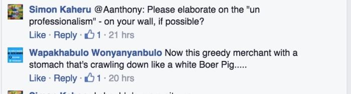 White Boer Pig